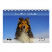 Scotch Collie 2021 Calendar